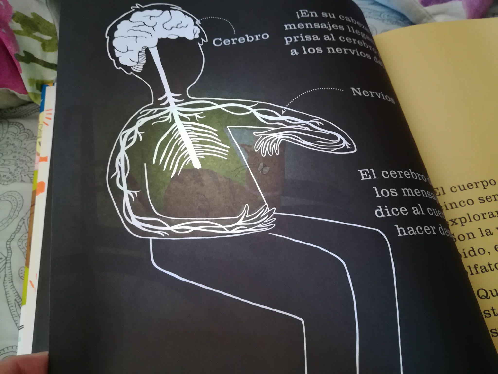 IMG 20180615 104340 - Descubrir el cuerpo humano a los niños con Astronave