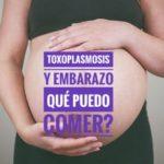toxoplasmosis y embarazo 150x150 - Ecografía morfológica. Semana 20 de mi embarazo.