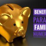 IMG 20180423 WA0041 01 150x150 - Beneficios para las familias numerosas. Existen o son como los Reyes Magos?