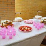 IMG 20190615 015242 150x150 - Organizar un cumpleaños infantil