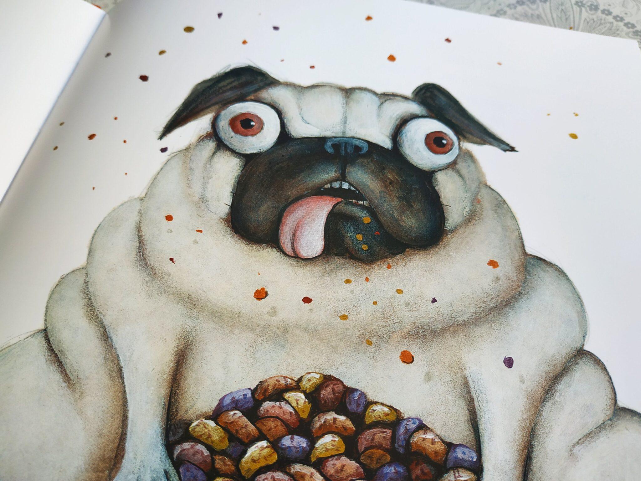 img 20191203 1225104150129805973281430 scaled - Aprende la lección con Coco el perro