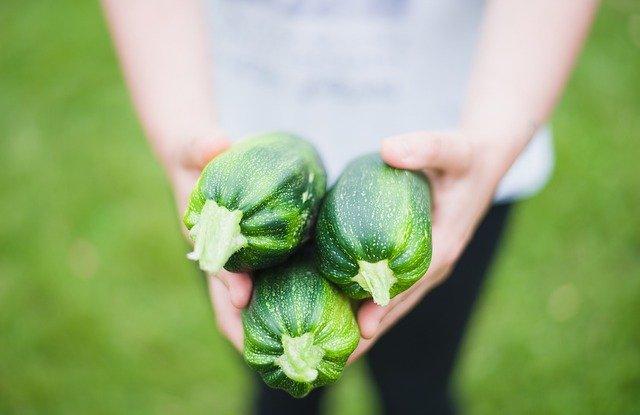 zucchinis 1869941 640 - Porqué la dieta keto funciona